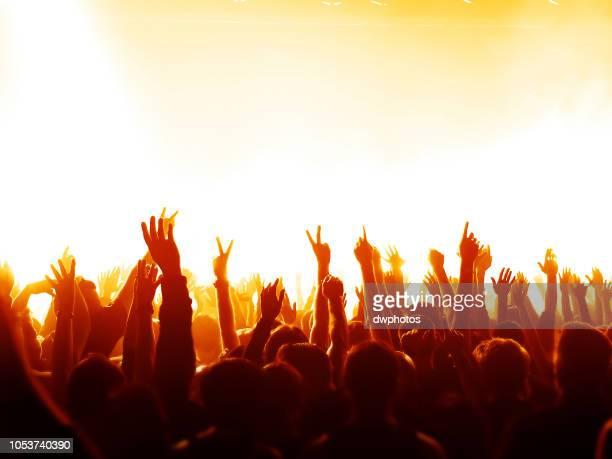 crowd gesturing at music concert - 芸能イベント ストックフォトと画像