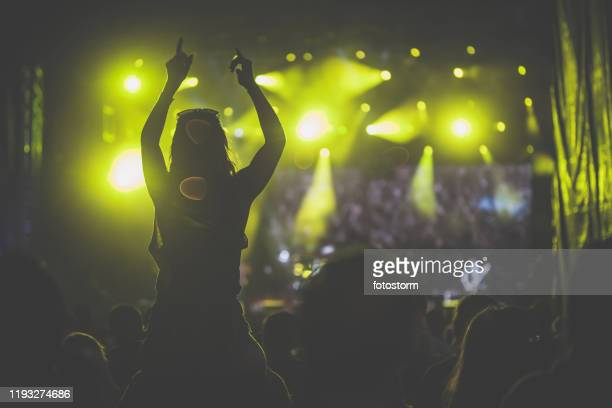 menigte met plezier op een rock concert - popmuziek concert stockfoto's en -beelden