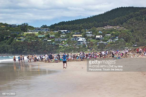 Crowd making personal spa pools at Hot Water Beach