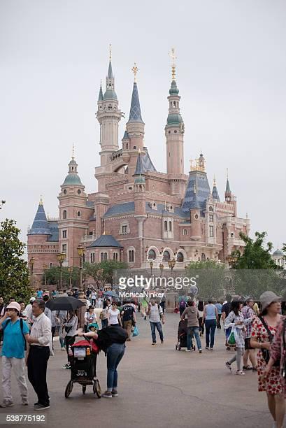 Crowd near castle in Disneyland Shanghai