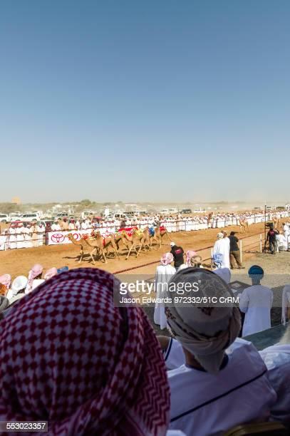 Crowd of men watching a camel race at the finish line. Bidiya, Sharqiya Region, Sultanate of Oman.