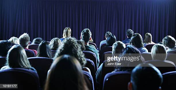 Crowd of people in movie theater, rear view