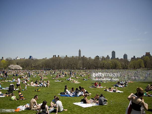 Crowd of people on grass with city skyline and blue sky