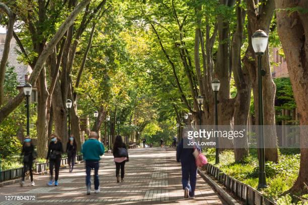 crowd of students on pedestrian lane - ペンシルベニア大学 ストックフォトと画像