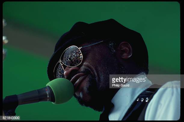 crowd reflected in glasses of singer-accordionist - accordionist stock pictures, royalty-free photos & images