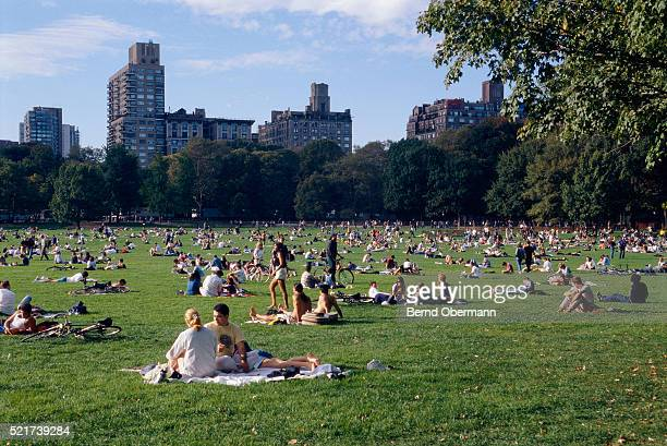 crowd relaxing on great lawn in central park - central park stock pictures, royalty-free photos & images