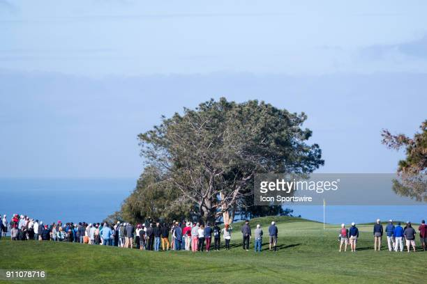 A crowd waits for Phil Mickelson to arrive on the green of the 10th hole on the North Course during the Farmers Insurance Open at Torrey Pines Golf...