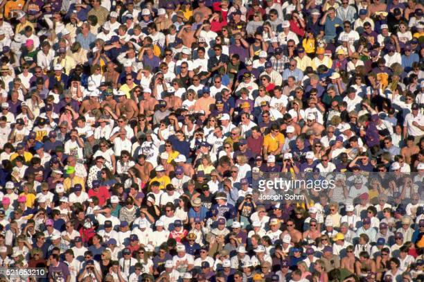 crowd watching rose bowl game - football league stock pictures, royalty-free photos & images