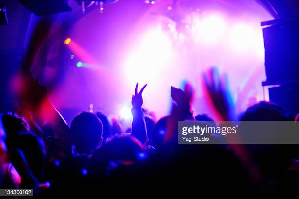 crowd with arms in air at nightclub music. - dancing stockfoto's en -beelden
