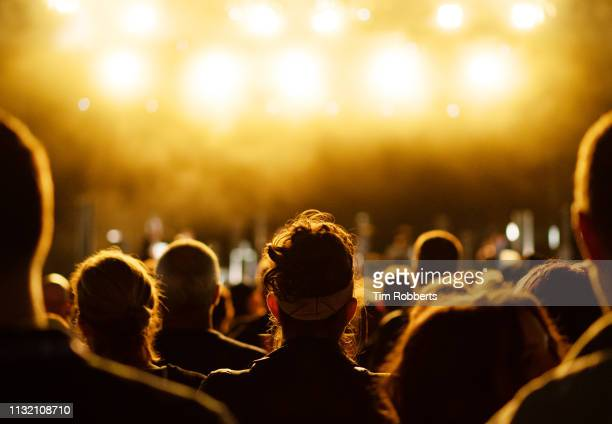 crowd with bright lights at music festival - tranquil scene photos et images de collection