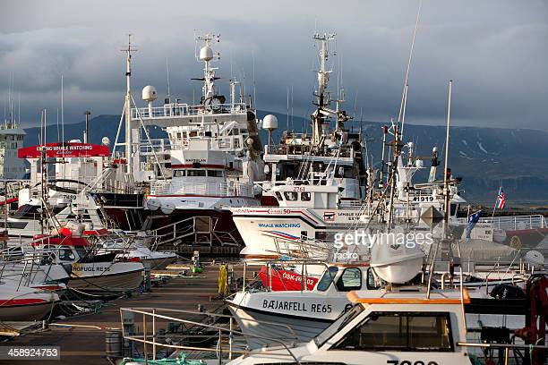 crowded dock in Reykjavik, Iceland harbor