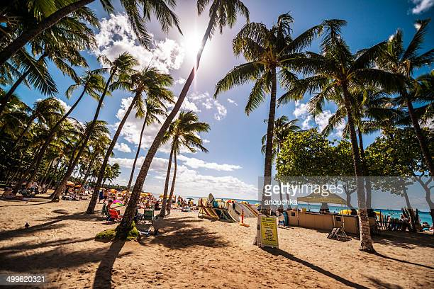 Crowded Waikiki beach