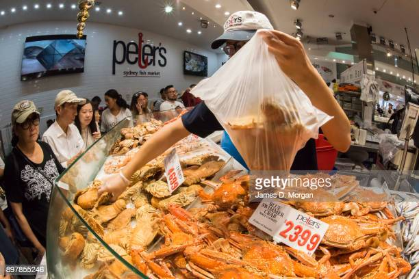 Crowds gather for last minute fish shopping before Christmas at the Sydney Fish Market on December 24 2017 in Sydney Australia The Sydney Fish...