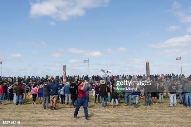 Crowds gtaher for a wood chopping contest at the 2017 Deni Ute Muster on September 30 2017 in Deniliquin Australia The annual Deniliquin Ute Muster...