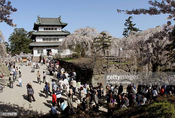 Crowds of locals walk past Hirosaki Castle during The Hirosaki Cherry Blossom Festival at Hirosaki Park on May 4 2005 in Aomori Prefecture Japan...