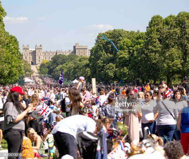 crowds of people filling the long walk in windsor great park to celebrate the marriage of meghan markle and prince harry at st george's chapel at windsor castle - meghan stock photos and pictures