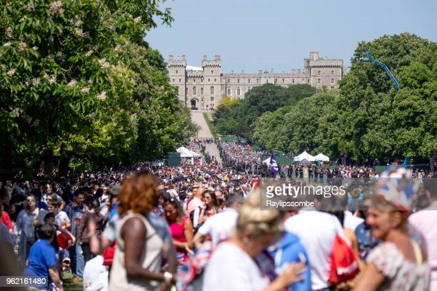 crowds of people lining windsor great park's 'long walk' to celebrate the marriage of meghan markle and prince harry - meghan stock photos and pictures
