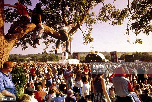 Crowds watching the main stage at Glastonbury Festival on a sunny afternoon. People sitting in tree