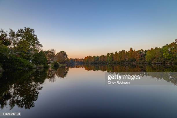 crowfield plantation lake with reflection in goose creek, south carolina, usa - southeast stock pictures, royalty-free photos & images