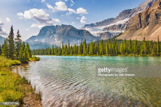 crowfoot glacier and upper bow lake banff national park canada - bow river stock pictures, royalty-free photos & images