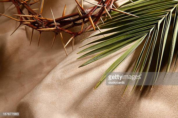 crown of thorns and palm branch - palm sunday stock pictures, royalty-free photos & images