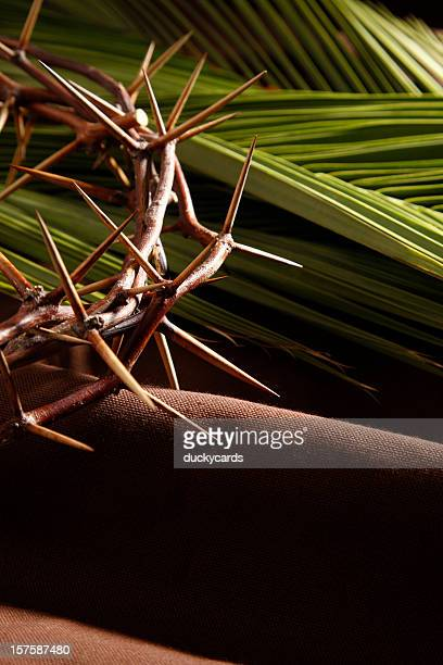 crown of thorns and palm branches - palm sunday stock pictures, royalty-free photos & images
