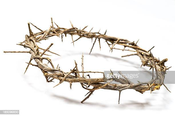Crown of Thorns on a light background