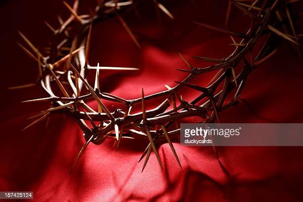 coroa de thorns em vermelho - coroa de espinhos imagens e fotografias de stock
