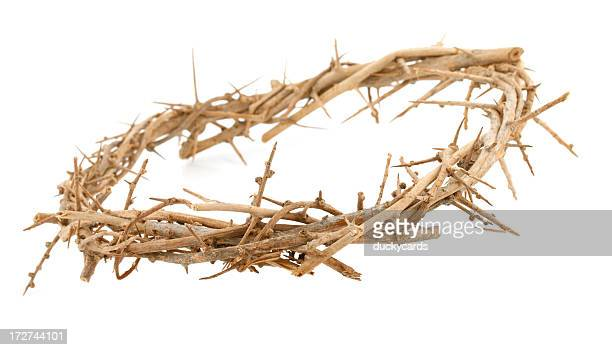 crown of thorns - hoofddeksel stockfoto's en -beelden