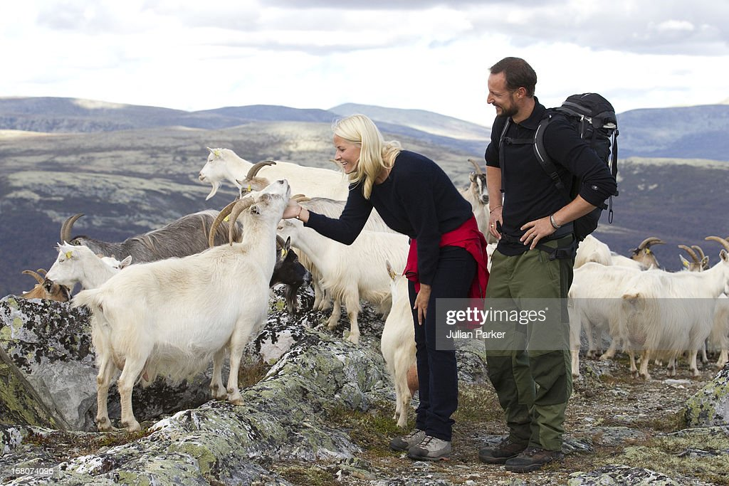 Hedmark Royal Visit : News Photo