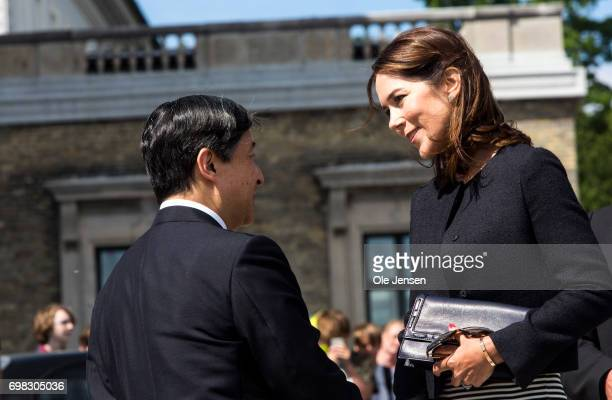 Crown Prince Naruhito of Japan and Crown Princess Mary of Denmark at the harbour where they will take a boat trip through the channels to the Little...