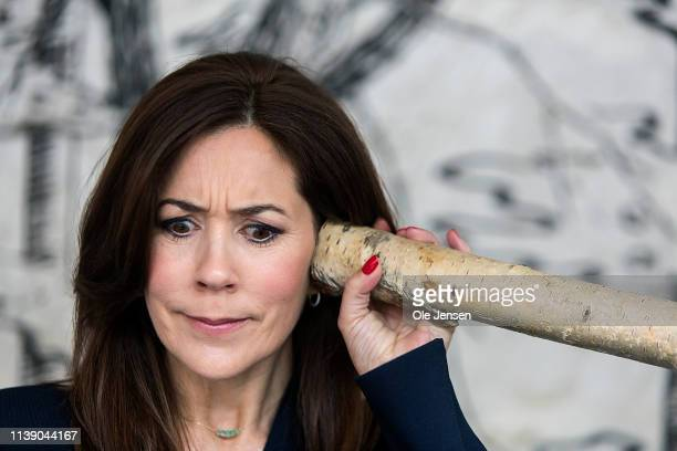 Crown Princess Mary of Denmark learns about sound during the opening of the Danish Science Festival on April 24, 2019 in Klampenborg, Denmark. The...