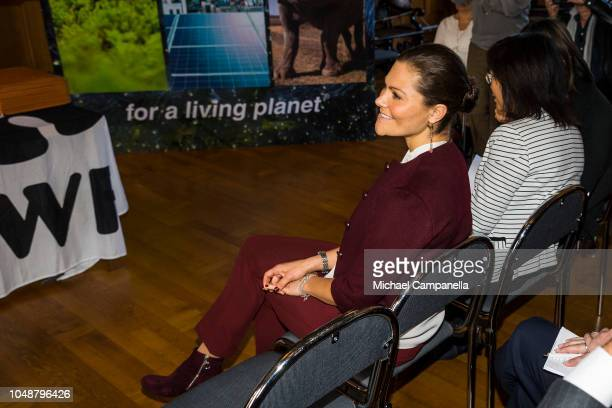 Crown Princess Victoria of Sweden attends the WWF's autumn meeting at Ulriksdals Palace on October 10 2018 in Stockholm Sweden