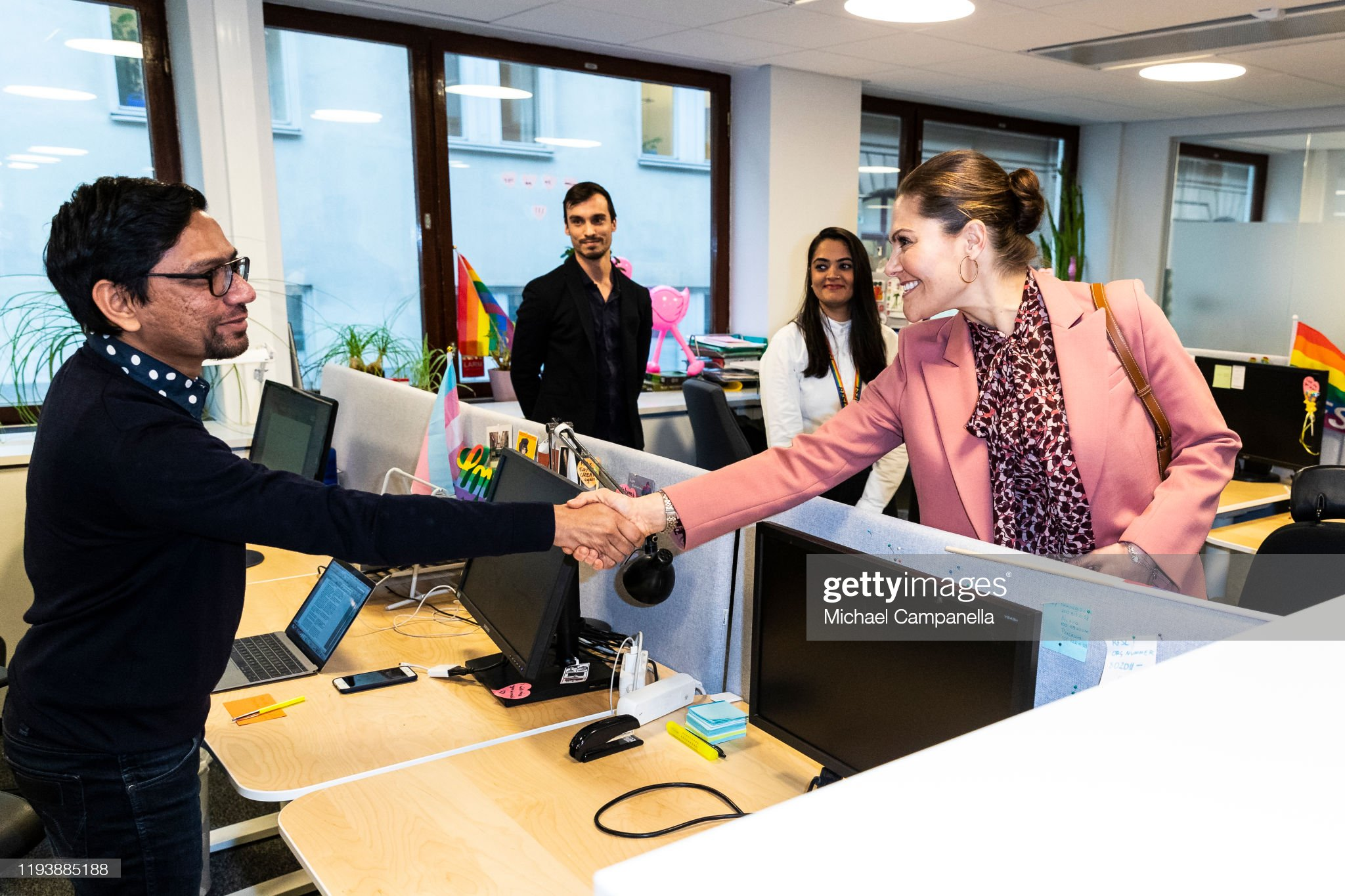 crown-princess-victoria-of-sweden-visits-the-swedish-federation-for-picture-id1193885188