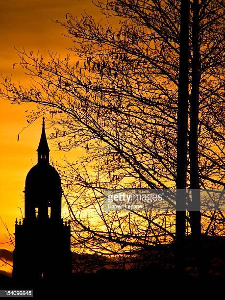 Croydon clock tower at dusk