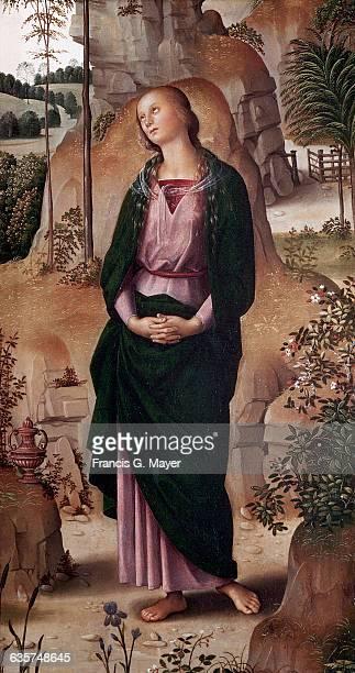 Crucifixion With the Virgin, Saint John, Saint Jerome, and Saint Mary Magdalene : Saint Mary Magdalene [right panel, detail]
