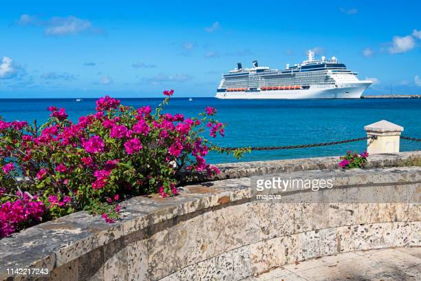 Cruise Ship and Blooming Bougainvillea, St. Croix