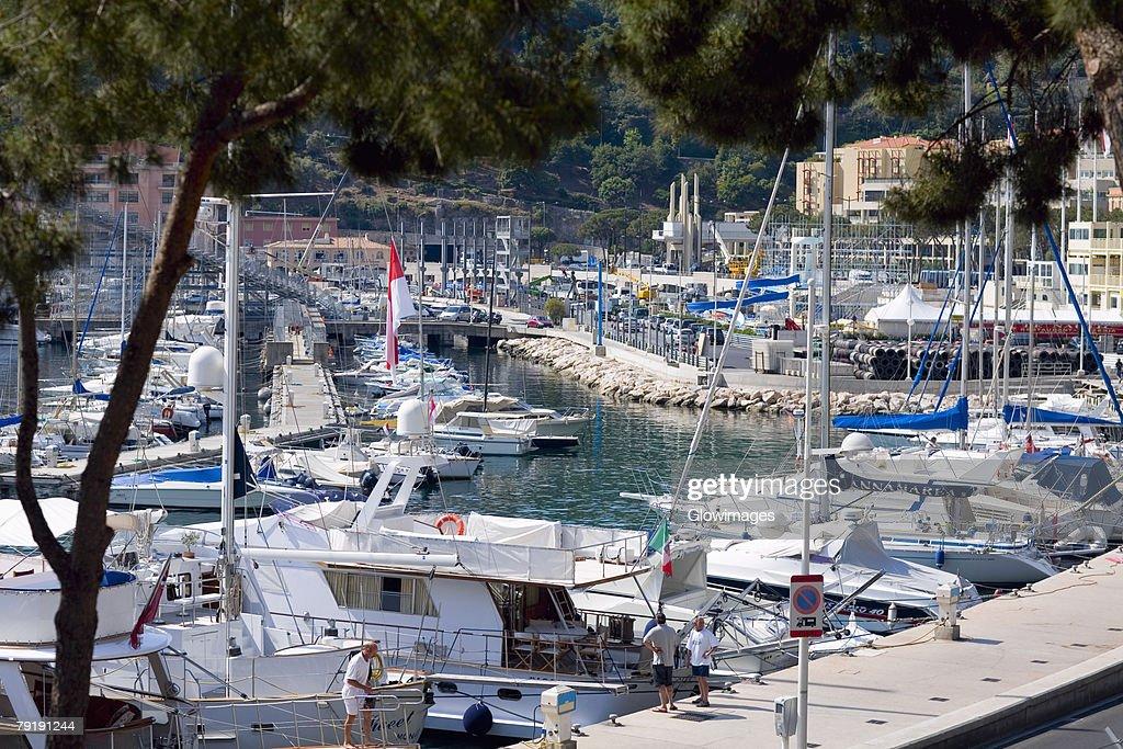 Cruise ship and boats docked at a harbor, Monte Carlo, Monaco : Stock Photo