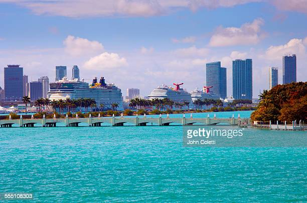 cruise ships, miami, florida - miami stock pictures, royalty-free photos & images