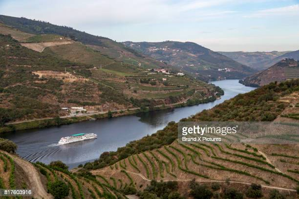 cruise through vineyards of the douro valley - douro river stock photos and pictures