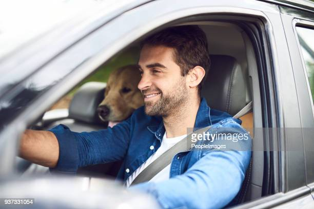 cruisin' with my best friend - driver stock pictures, royalty-free photos & images