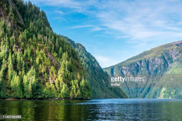 cruising in misty fjords national monument, ketchikan, alaska, usa - national forest stock pictures, royalty-free photos & images
