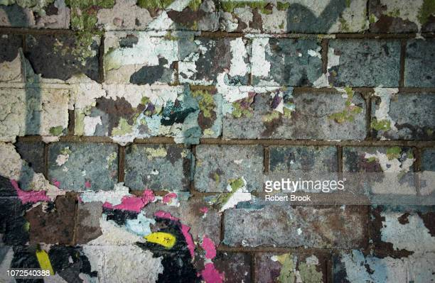 crumbling paint on old wall - fading stock pictures, royalty-free photos & images