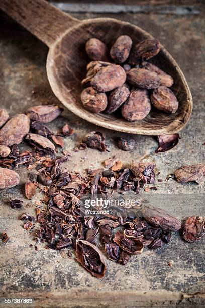 Crushed and whole cocoa beans
