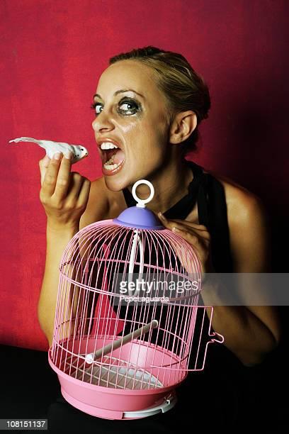 Llorar mujer joven sobre aves que comen por mascota
