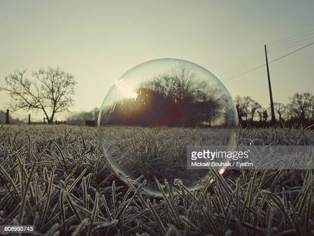 Crystal Ball On Frozen Grassy Field During Winter At Dusk