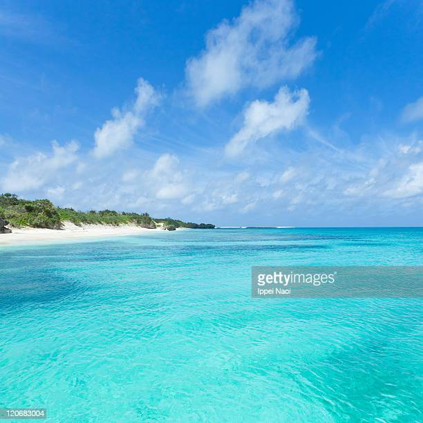 Crystal clear blue sea and tropical island, Japan