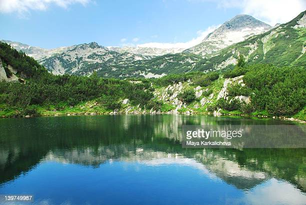 Crystal clear water in mountain lake, summer view