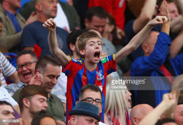 Crystal Palace fan celebrates during the Premier League match between Crystal Palace and Chelsea at Selhurst Park on October 14 2017 in London England
