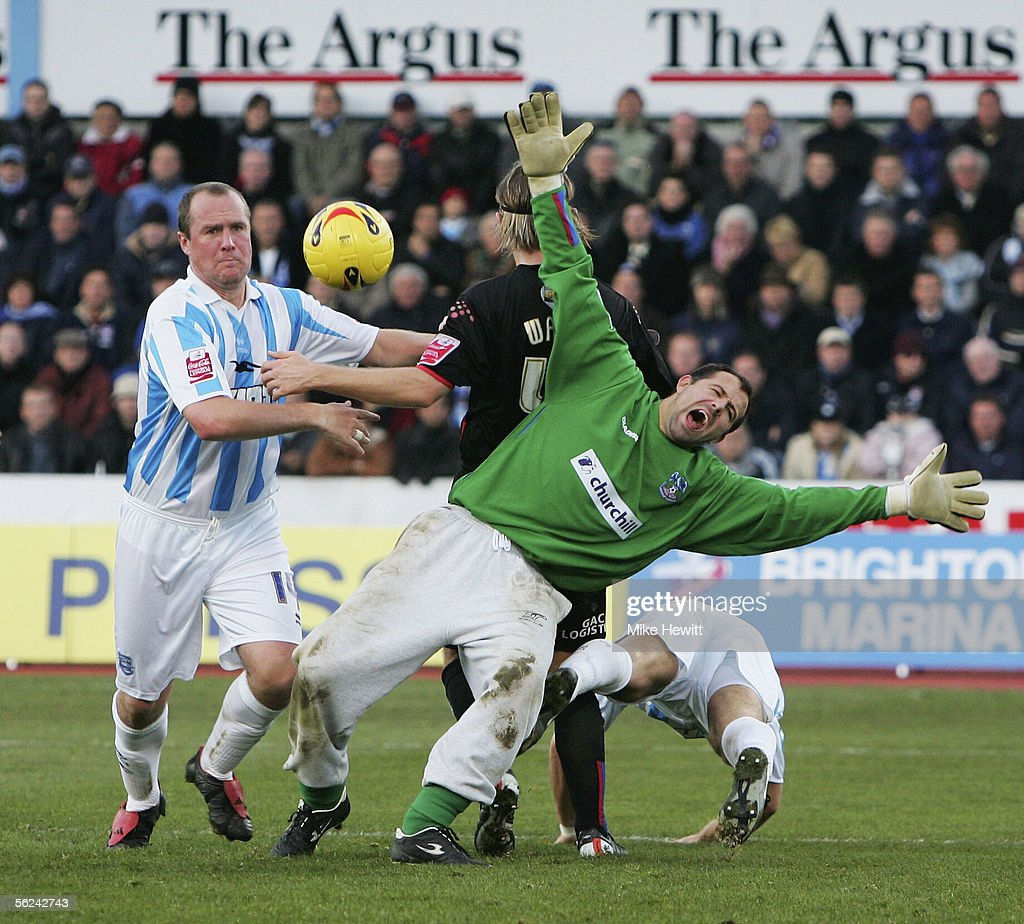 Brighton & Hove Albion v Crystal Palace : News Photo